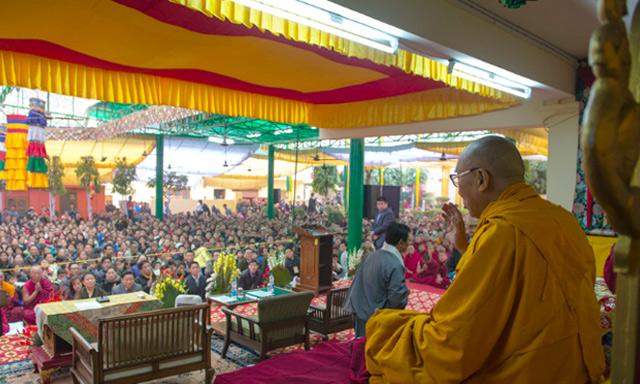 dalaijoy